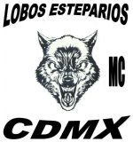 Mc lobos esteparios cdmx (steppe wolves)