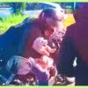 Un Pequeño Poodle Abandonado En Una Autopista Fue Rescatado Por Un Grupo De Motociclistas